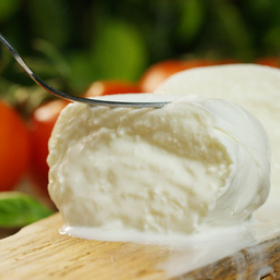 4 fettine di Mozzarella