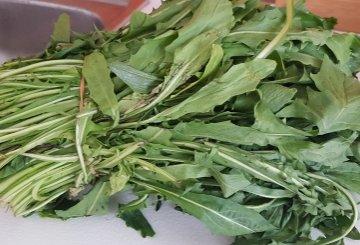 Ricetta Cicoria In Padella O Ripassata Il Contorno Di Verdura Facile E Gustoso Cucinare It