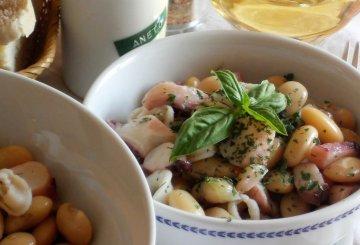 Ricetta moscardini in umido for Cucinare moscardini