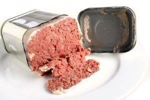 <h3>Additivi ingeriti in un anno</h3> carne in scatola
