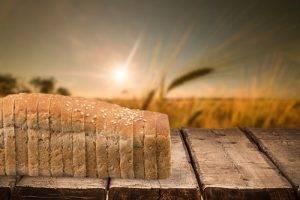 Cibi che contengono alcol Pane in cassetta
