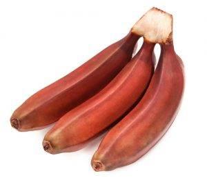 banana_rossa