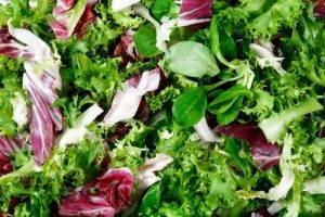 Cibi da evitare di mettere nel freezer insalate