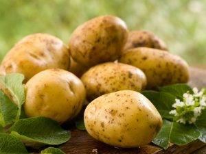 Cibi da non mettere nel freezer le patate