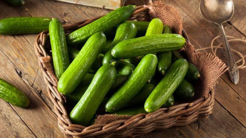 Cetrioli l 39 ortaggio che stimola l 39 intelligenza for Cucinare cetrioli