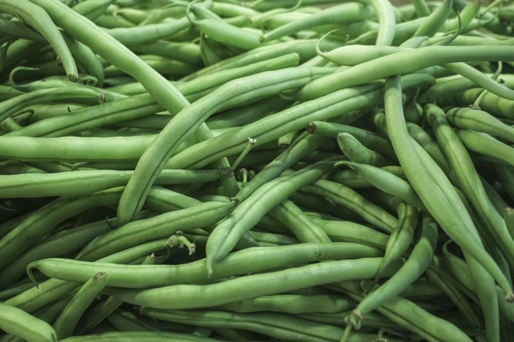 Fagiolini il legume con le propriet di un ortaggio - Cucinare i fagiolini ...