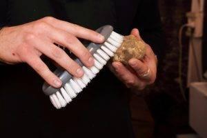 pulire il tartufo: spazzolare